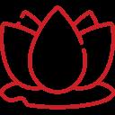 Lotus - Kalari Ayurveda